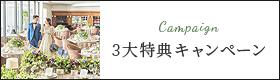 3大特典キャンペーン